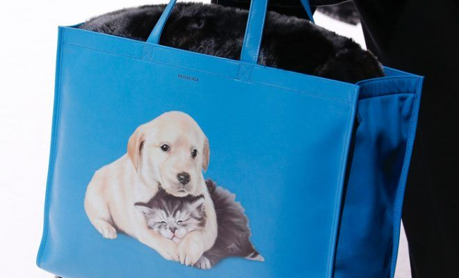 balenciaga-puppy-kitten-bags-collection-fall-2018