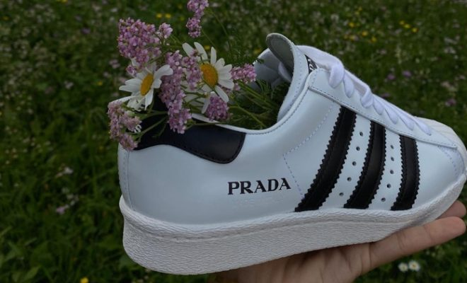 prada-superstar-sneakers-collaboration